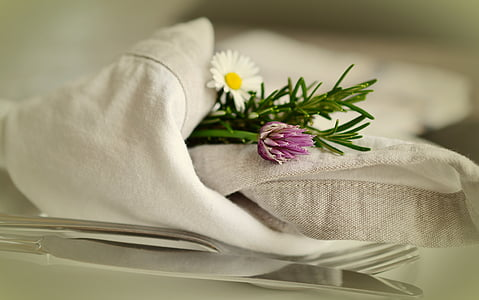 closeup photography of white daisy flower covered with white towel