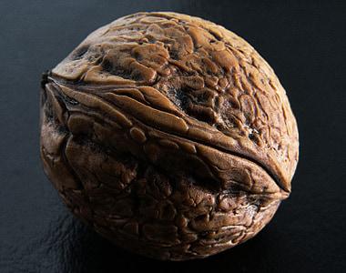photography of wallnut