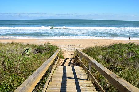 brown wooden dock near seashore