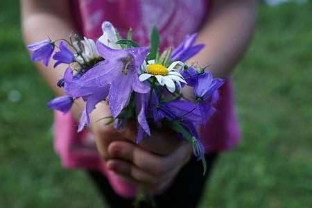 girl holding a purple and white petaled flowers