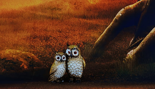 two owl painting