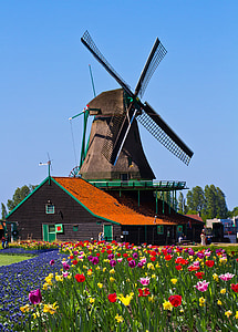 brown and green windmill
