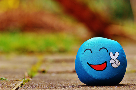 shallow focus photography of blue peace emoticon toy