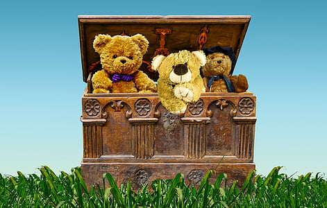 teddy bears inside hope chest