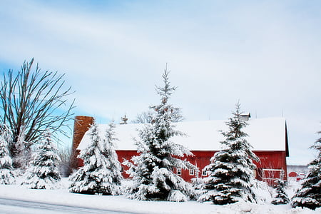 red and white house filled with snow
