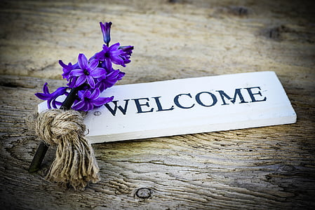 purple hyacinth flower on white welcome-printed wooden decor