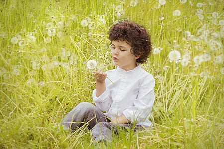 toddler holding and blowing white dandelion flower at daytime