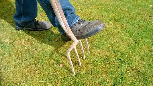photo of person stepping on lawn rake