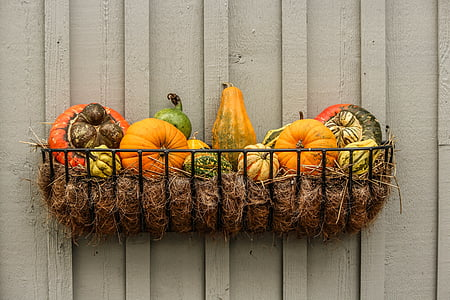 tray of assorted-color squashes