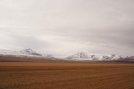 desert against snow-capped mountain