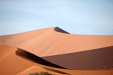 desert dune during day time