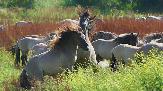 gray horses on grass field