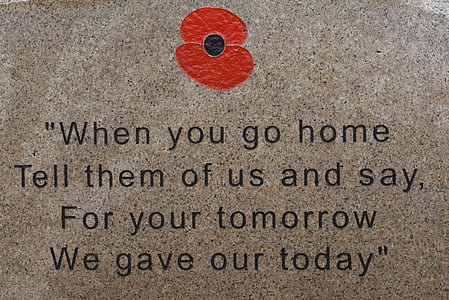 when you go home tell them of us and say for your tomorrow we gave our today text overlay