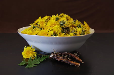yellow petaled flowers in white ceramic bowl