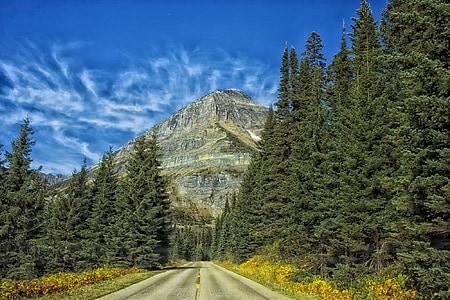 Yosemite National Park Road, California