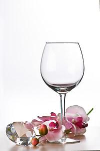 clear long-stemmed wine glass beside pink orchid flower