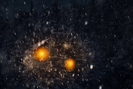 winter, landscape, night, dark, evening, snow