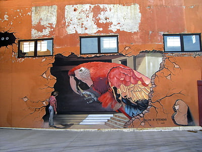 red scarlet macaw mural painting
