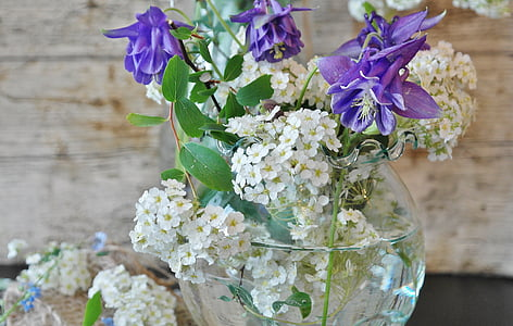 purple and white petaled flowers in glass vase in focus photography