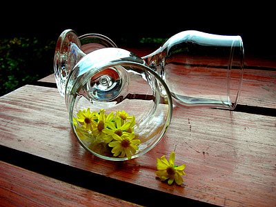 yellow flower in wine glass