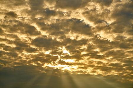 photo of sun rays