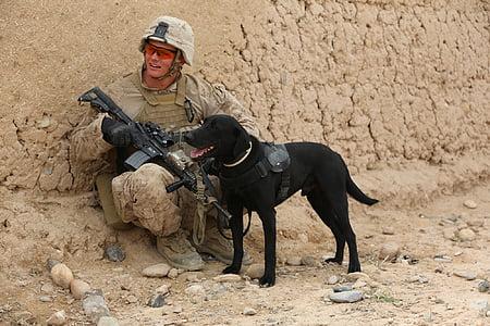 soldier holding gun sitting beside dog