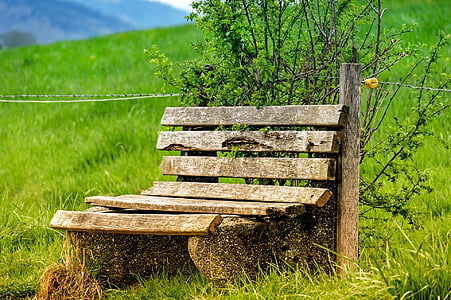 brown wooden bench with background of mountain