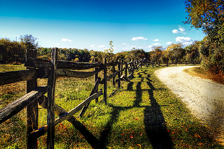 brown wooden farm fence beside the road during day