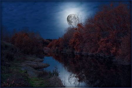 full moon above river bank