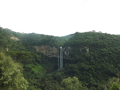 aerial view of green trees and waterfalls