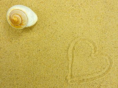 white shell near heart sand