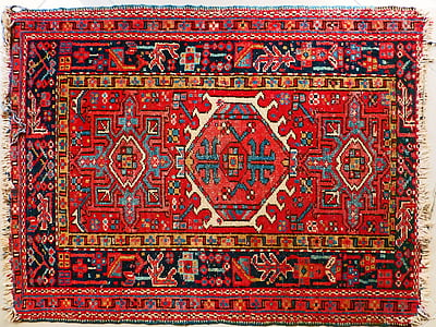 red, black, and blue area rug photography