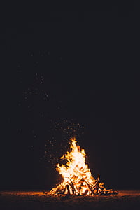 bonfire during night time