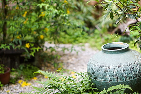 green ceramic vase surrounded with green leafed plants