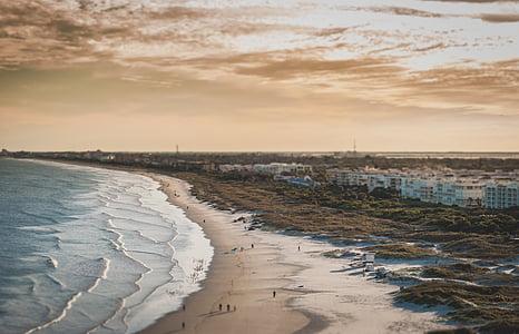 people on seashore during sunset