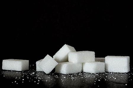 closeup photo of sugar cubes
