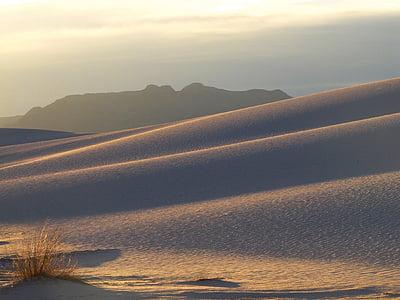gray desert