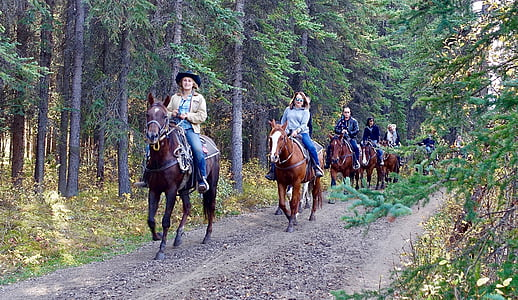 photo of people ride on horses