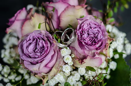 two silver-colored wedding bands in between purple roses