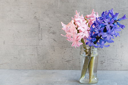 pink and purple flowers in clear glass jar