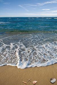 horizon photo of sea and sky