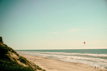 people walking along seashore under sunny day