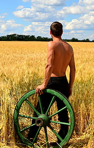 man standing on wheat field holding barrel wheel
