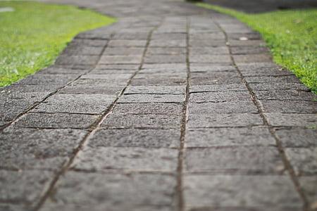 selective focus photography of gray concrete pavement