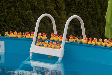 rubber duck toys on above ground pool frame