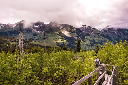 person walking on gray wooden bridge between forest