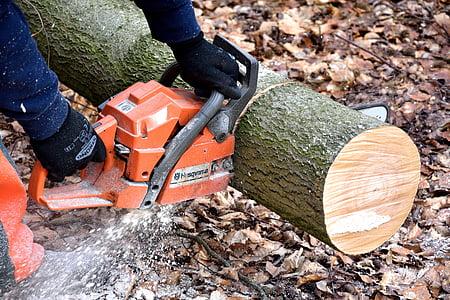 person cutting log