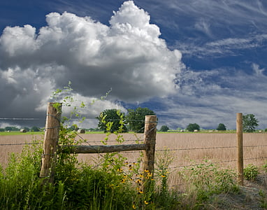 nimbus cloud over grass field