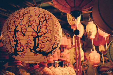 white, black, and pink floral oil paper lanterns