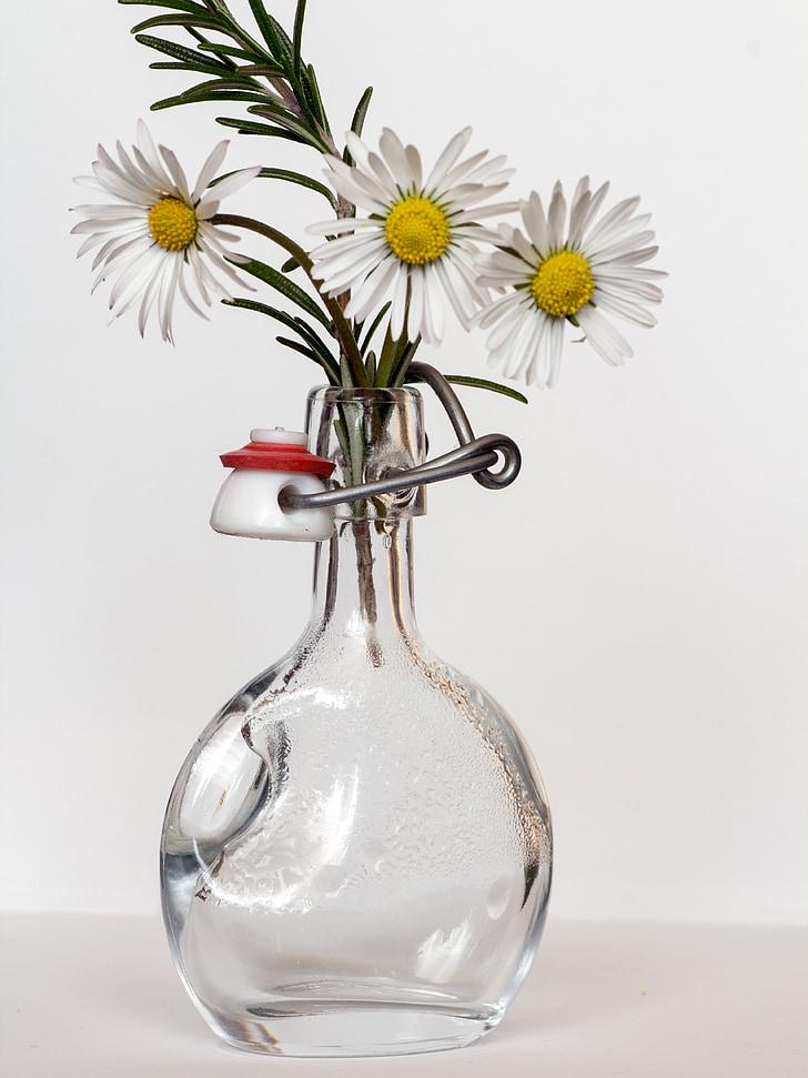 Royalty-Free photo: Still life photography of white daisy ...